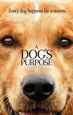 A_Dog's_Purpose_(film)