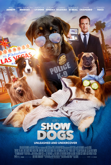 Show_Dogs